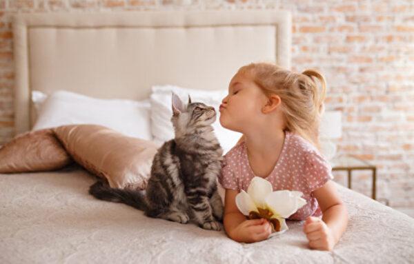 宠物能丰富生活 适合孩子饲养的8种动物(多图)