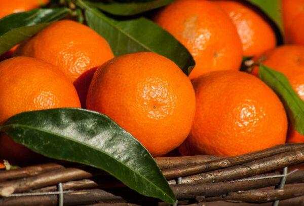 蒸橘子堪比咳嗽药?中医师推荐止咳妙方