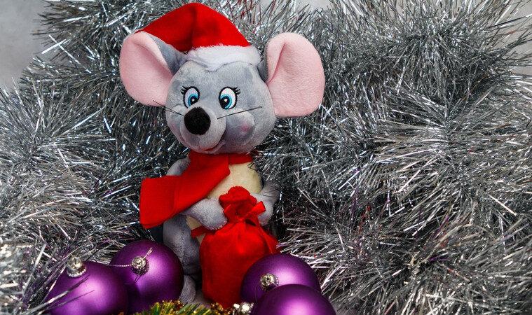 鼠年话鼠:善鼠、报恩鼠(组图)