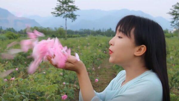 """李子柒爆红有原因 她的""""故事""""属于谁?"""