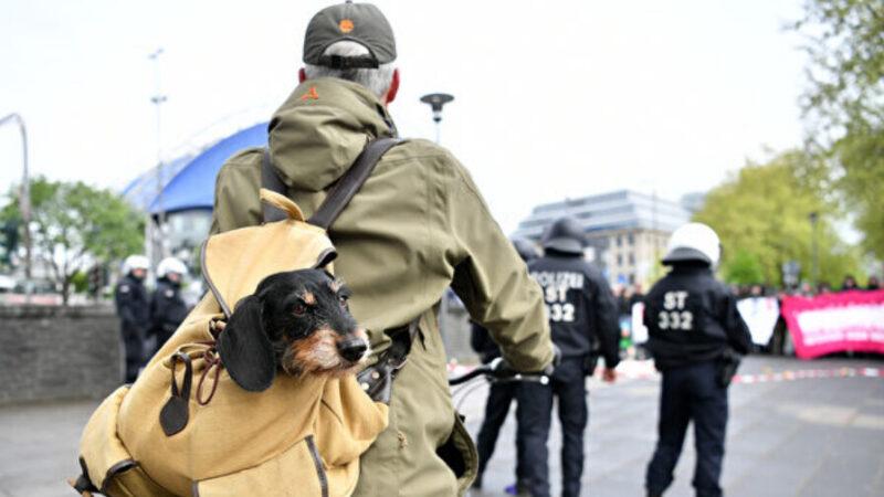帶著寵物去旅行 狗背包選購指南(組圖)