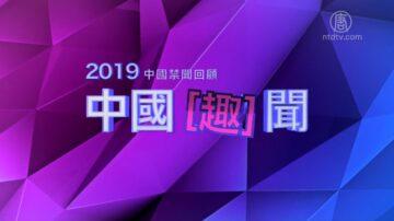 2019中國禁聞回顧 【中國趣聞】完整版(上)