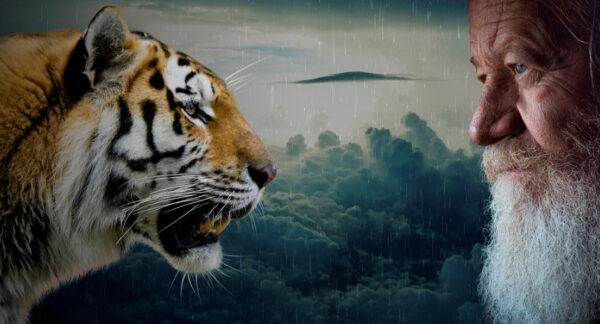 阅微草堂笔记:老虎吃人也有所选择