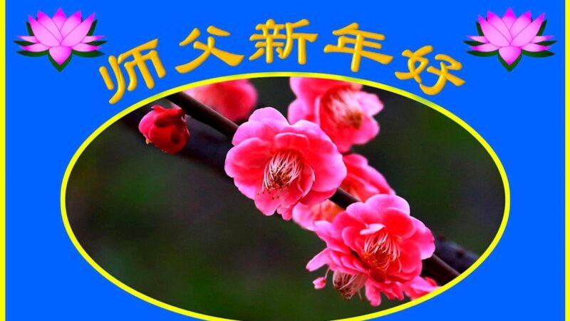 北京法轮功学员恭祝李洪志大师新年好(24条)