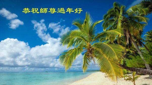 大陸法輪功學員和家人恭祝李洪志大師新年好(34條)