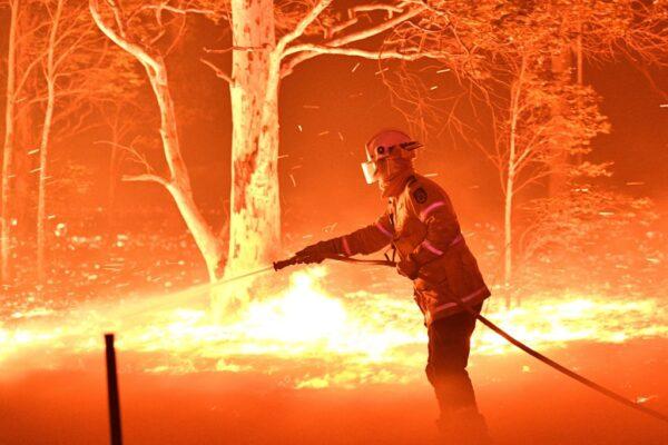 澳洲野火已燒掉3個台灣 非人力能滅 恐再燒1個多月