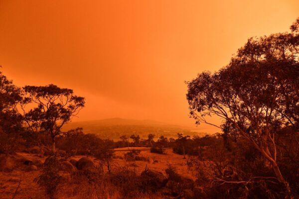 氣溫飆40度強風飄忽難測 澳洲野火擴散恐失控