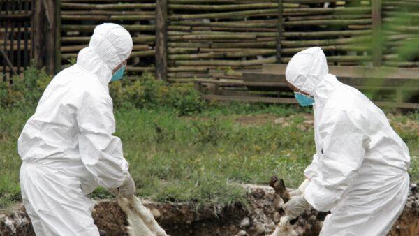逾千蘭州人排隊查病 百餘人布魯氏菌呈陽性