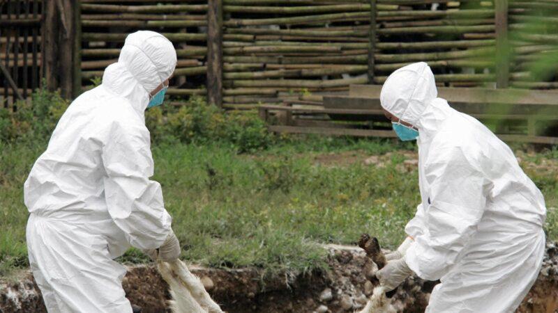 逾千兰州人排队查病 百余人布鲁氏菌呈阳性