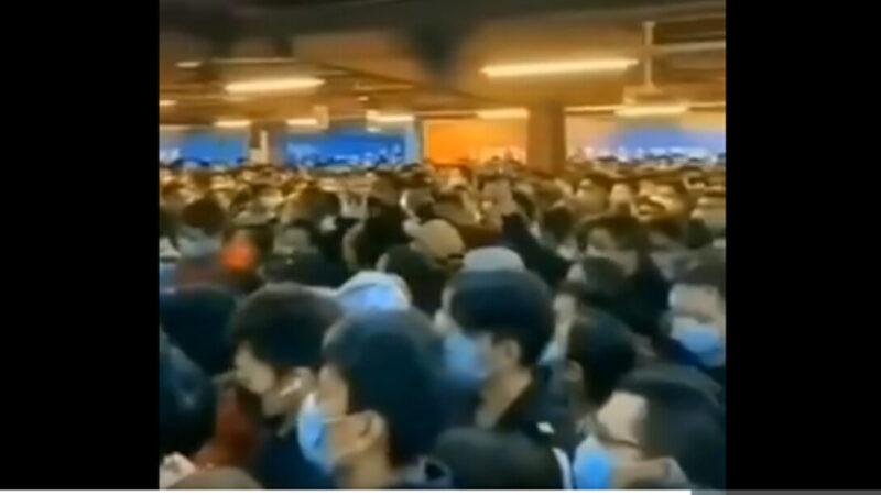 陆客蜂拥赴香港避瘟疫 挤爆海关(视频)