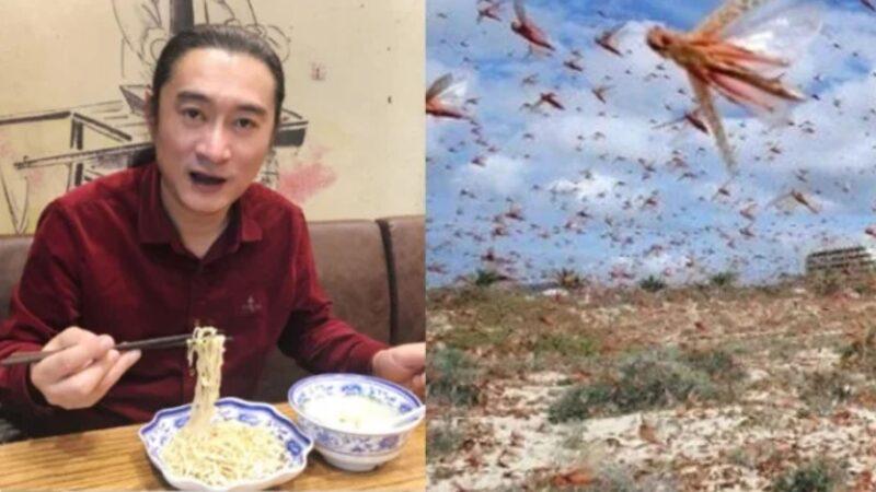 """黄安号召""""吃虫救国""""惨遭大陆网友打脸"""