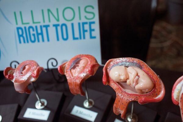 胎儿在妈妈肚子里不为人知的这些事