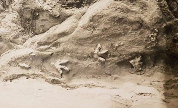 洞顶恐龙脚印之谜终于获解