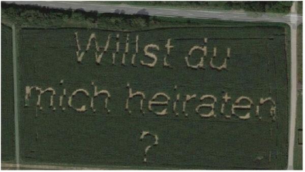 男子玉米地「種下」浪漫字句 意外被谷歌地圖拍下(圖)