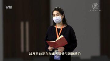 【严真点评】外交部大实话:武汉肺炎非洲失守会酿世界灾祸?