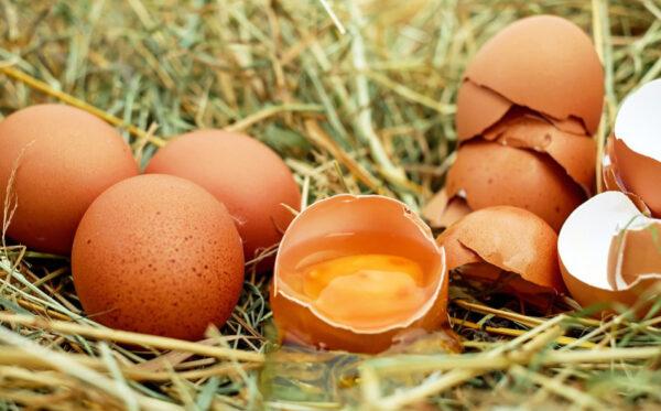 别小看一颗水煮蛋!鸡蛋身上有四味药(组图)