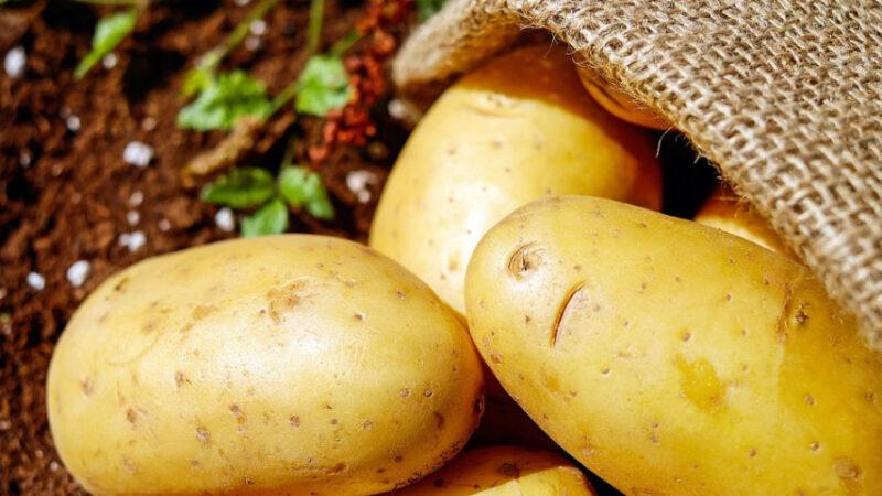 10种不能放入冰箱存放的水果和蔬菜(组图)