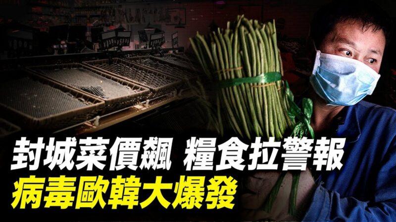 世界的十字路口:封城菜价飙 粮食拉警报