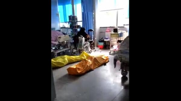 武汉医院再曝内部视频:到处尸体与病人同室