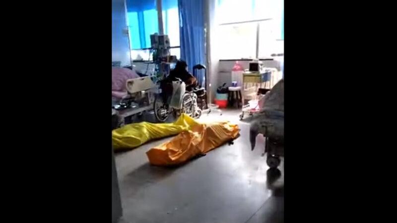 武漢醫院再曝內部視頻:到處屍體與病人同室