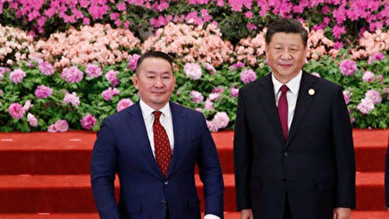 蒙古总统晤习近平送3万只羊 回国被隔离