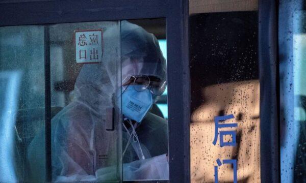 病毒源自實驗室?學者論文曝研究員曾遭蝙蝠襲擊