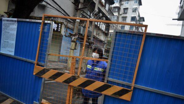 中国专家赞方方《封城日记》:强过百名记者