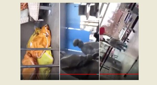 武汉网友暗访医院 5分钟见8尸体 当晚被抓(视频)