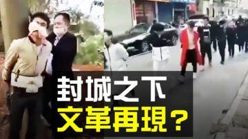 """【热点互动】各地封城会延续多久? """"文革基因""""添人道灾难"""