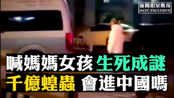 【拍案驚奇】瘟疫衍生悲劇 千億蝗蟲會進中國?