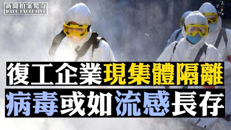【拍案惊奇】复工企业现集体隔离 病毒或如流感长存