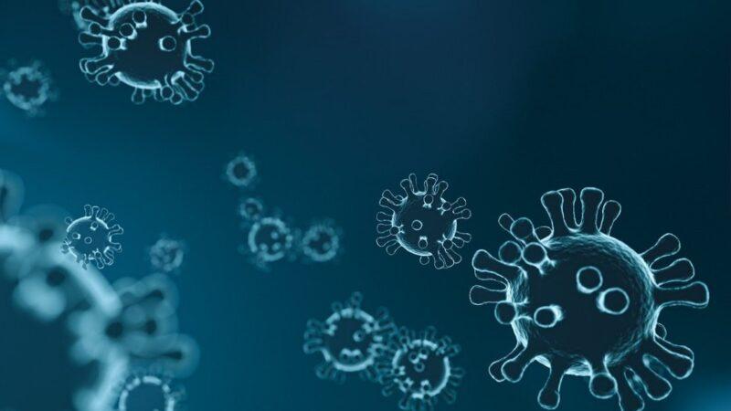 武漢肺炎關聯SARS 病毒新命名為「SARS-CoV-2」