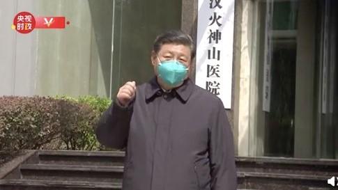 金言:王滬寧導演抗疫電視劇《假的 假的》?