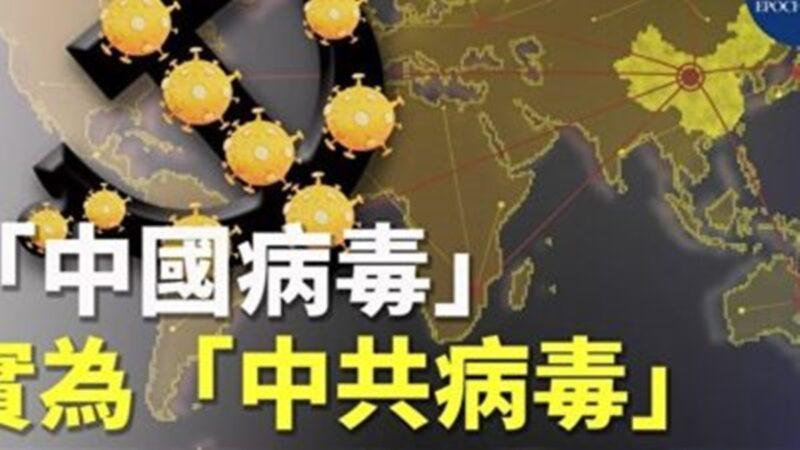 """【名家专栏】""""中共病毒""""会使中共崩溃吗?"""