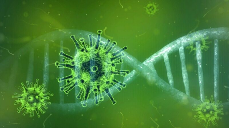 大外宣炒作病毒源头在美国 陆专家:源头在武汉
