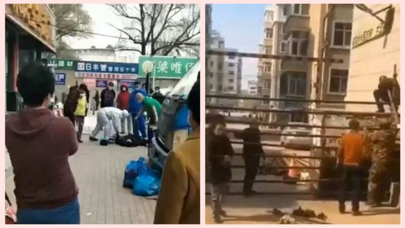 """哈尔滨惊现""""随地倒""""小区又被封(视频)"""