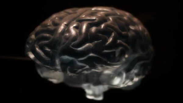 """人的大脑居然""""活了2000多年""""震惊了科学界"""