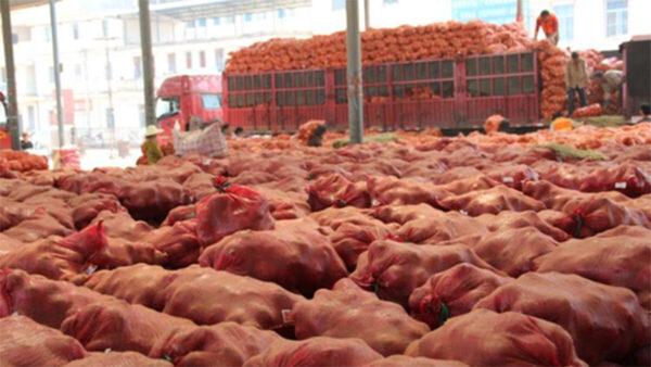 疫情衝擊致農產品滯銷 中國農民損失慘重