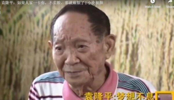 袁隆平:如果別國不賣糧 中國就要挨餓(視頻)