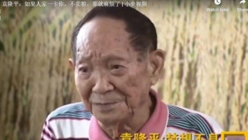 袁隆平:如果别国不卖粮 中国就要挨饿(视频)