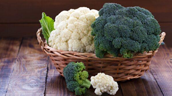 """防疫吃白、绿花椰菜 强化人体的""""第一道防线""""(组图)"""