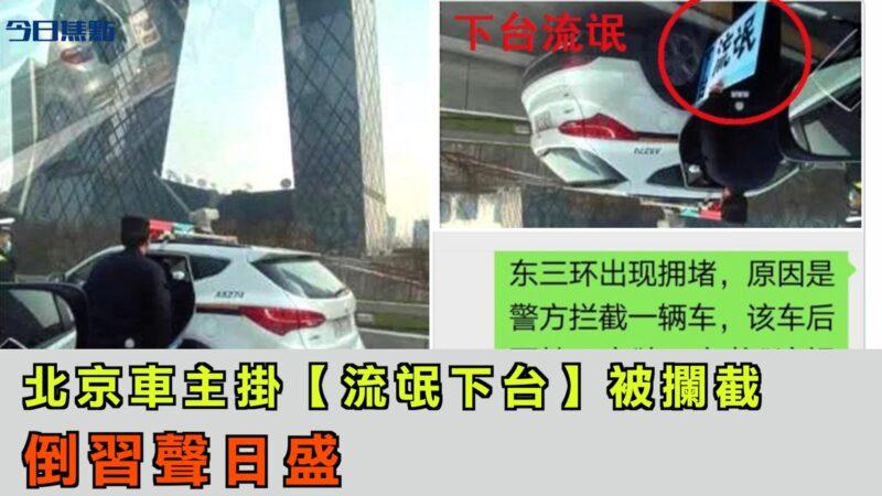 """北京车主车后挂""""流氓下台""""被拦截 反习风日盛【今日焦点】"""