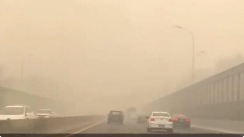 又烧尸?哈尔滨疫情告急 PM2.5浓度超4000(视频)