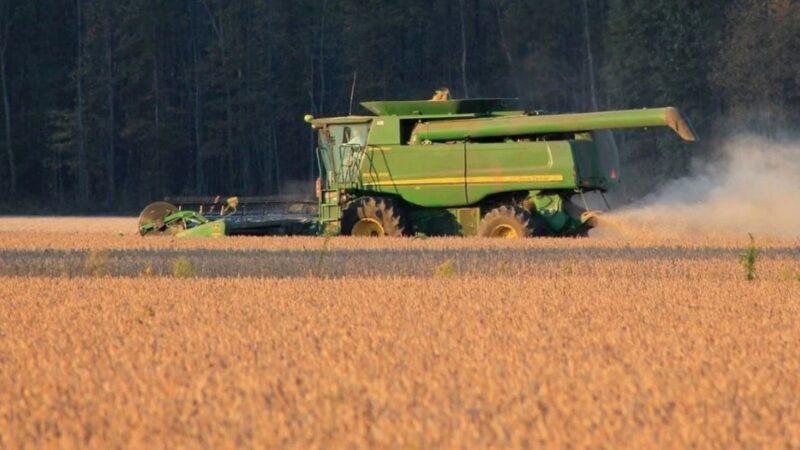 粮食有危机?中国狂买美国牛肉大豆 还预购3000万吨农产品