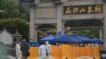 一把骨灰:武汉,监视下的安葬与逝者的尊严