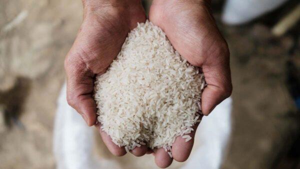 中國米價全面上漲 當局緊急放糧維穩