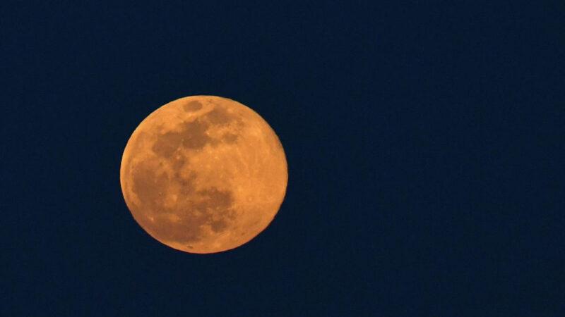 不忘推窗賞明月 2020年最大超級粉紅月亮