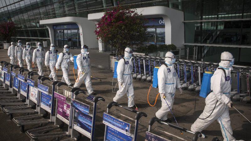 石正麗曾瘋狂查記錄 病毒專家:中共病毒可能從武漢實驗室泄漏
