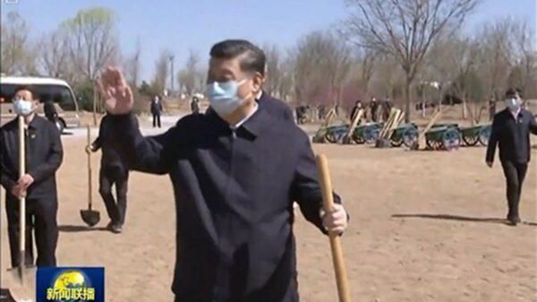 北京疫情加重?习近平种树仍戴口罩全程防护