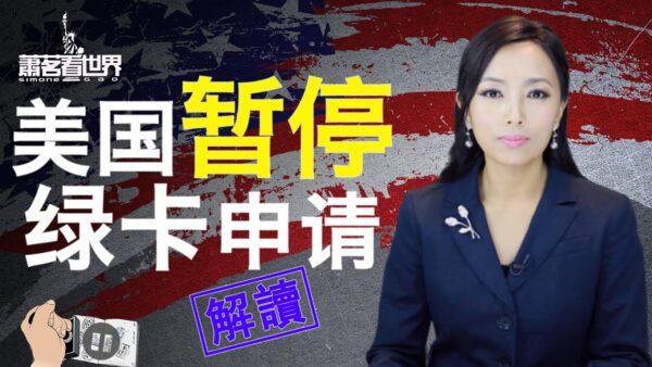 【萧茗看世界】美国暂停绿卡申请 意味着什么?